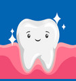 smiling clean healthy tooth vector image vector image