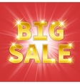 Yellow gold metal Big Sale text icon vector image