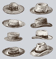 collection of the male and female hats vector image