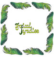 frame from palm leaves vector image vector image