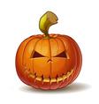 Pumpkins Mean 3 vector image vector image