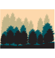 Silhouettes of spruce vector image vector image