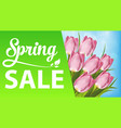 spring sale with tulips and grass vector image vector image