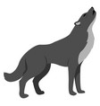 black wolf on white background vector image vector image