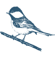 Blue tit print vector image vector image