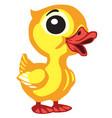 cartoon little duck vector image vector image