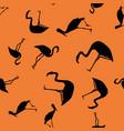 contour tropical birds seamless orange background vector image vector image