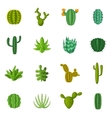 Green cactuses icons set cartoon style vector image vector image