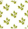 green tea or leaves seamless pattern on vector image