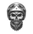 monochrome vintage skull vector image vector image