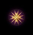 north star gold wind rose golden compass logo vector image