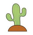 saguaro cactus icon vector image vector image