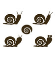 set snail icon and signs vector image vector image