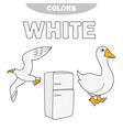 white - learn the colors kids are learning the vector image