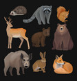 wild northern forest animals set hedgehog vector image