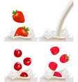 berries and milk vector image vector image