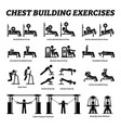 chest building exercises and muscle building vector image