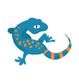 gecko and lizard logo vector image