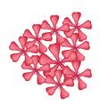 Red Rose Geranium Flowers vector image