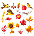 set autumn leaves and items vector image vector image