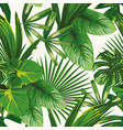 tropical green leaves seamless white background vector image vector image