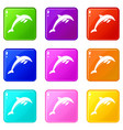 dolphin set 9 vector image vector image