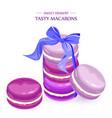 macaroons lavender taste french desserts vector image