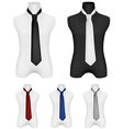 Necktie on mannequin template vector image