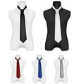 Necktie on mannequin template vector image vector image