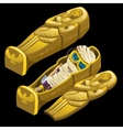 Sarcophagus and funny mummy in glasses vector image vector image