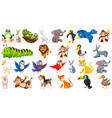 set cute animal vector image vector image