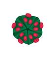 structure of dangerous virus hazardous vector image vector image