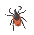Tick Color vector image vector image