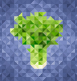 Triangle low poly celery icon vector image vector image