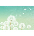 Abstract background with flower dandelion vector image vector image
