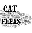 aghhh my cat has got fleas text word cloud concept vector image vector image