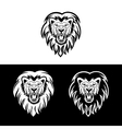 lion3 vector image vector image