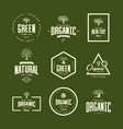 organic natural and healthy farm fresh food retro vector image vector image