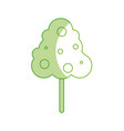 silhouette natural tree with fruits botany icons vector image