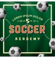 Soccer academy football soccer ball on the field vector image vector image