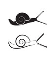 snail on white background reptile animals vector image