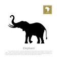 black silhouette elephant on white background vector image vector image