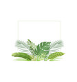 exotic tropical leaves banner poster wedding vector image vector image
