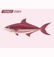 fish character cartoon vector image vector image