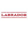 Labrador Watermark Stamp vector image vector image