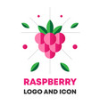 raspberry icon logo berry vector image vector image