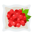 red berries viburnum in a plate icon flat vector image vector image