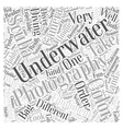 camera bag underwater Word Cloud Concept vector image vector image