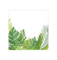exotic tropical foliage border with space for your vector image vector image