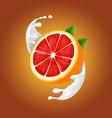 grapefruit in a milk or yogurt realistic splash vector image vector image